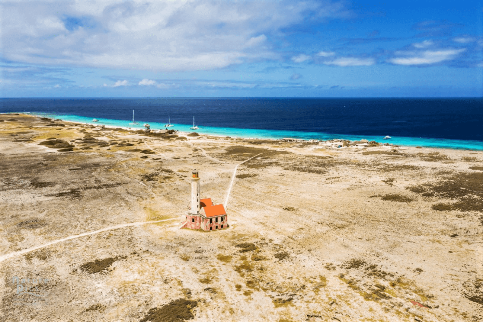 Discover Things to Do in Curacao   Dive Travel Curacap