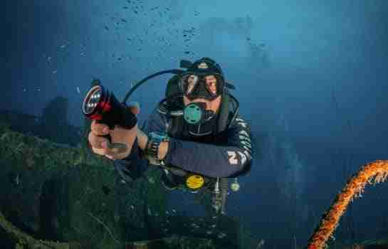 Dive in Curacao, The Heart of the Dutch Caribbean | Dive News Curaçao
