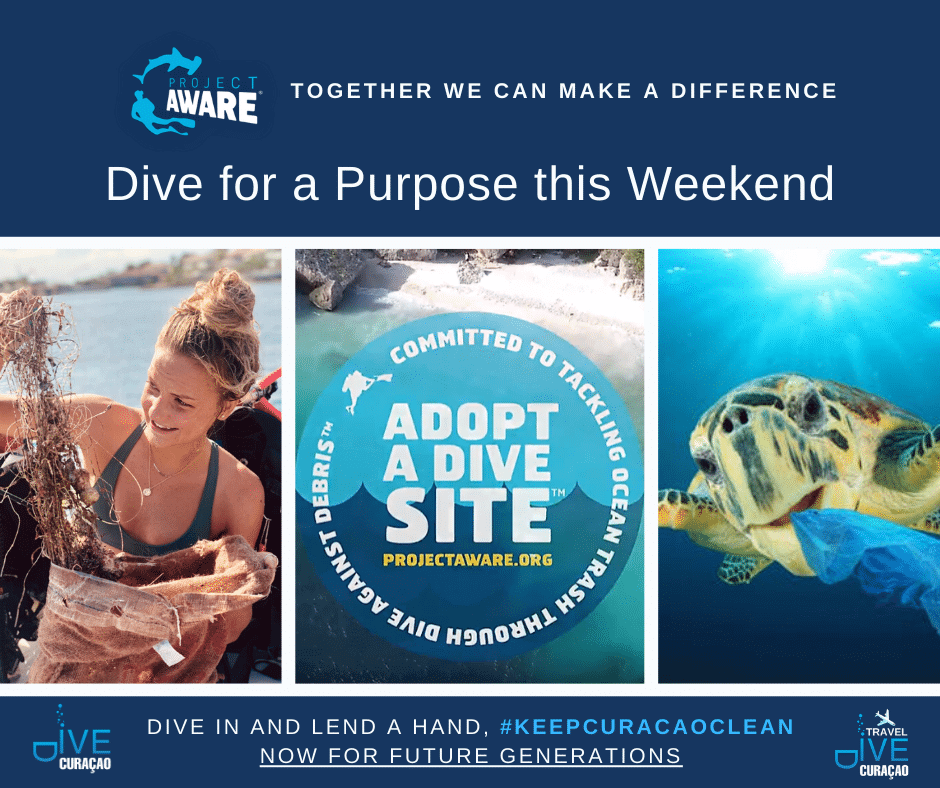 Project AWARE on Curacao - Protecting What We Love | Dive Curaçao