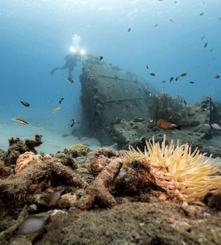 Curacao Dive Site Guide   Black Sand Beach   Dive Curaçao