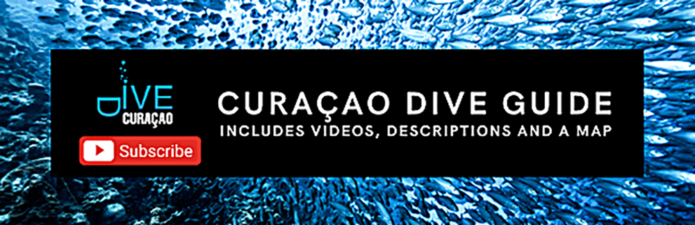Dive Curacao YouTube Channel