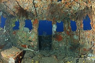 Superior Producer | Curaçao Dive Site Guide | Dive Travel Curacao
