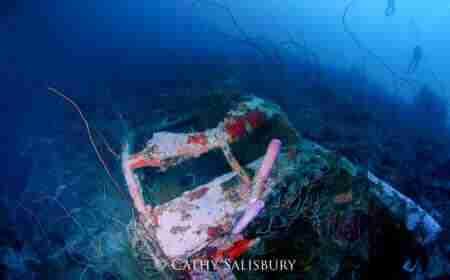 Curacao Dive Site Guide | Car Pile at Sunscape Curaçao | Dive Curaçao