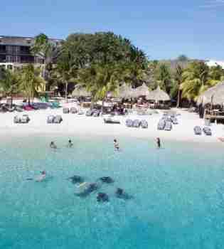 Curacao Dive Site Guide   Stella Maris   Dive Curaçao
