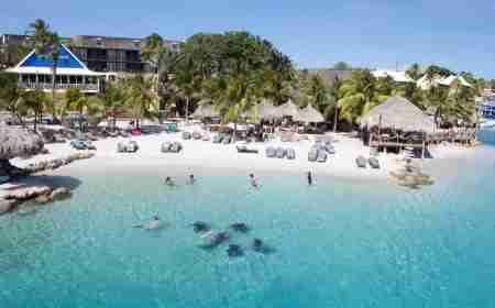 Curacao Dive Site Guide | Stella Maris | Dive Curaçao