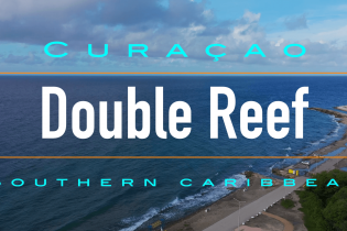 Double Reef | Curaçao Diving Guide | Dive Travel Curacao