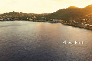 Playa Forti - Sweet Alice | Curacao Diving Guide | Dive Travel Curacao