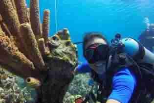 Curacao Dive Site Guide | Pierbaai | Dive Curaçao