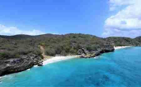 Curacao Dive Site Guide | San Juan | Dive Curaçao