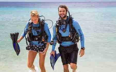 Curacao Dive Site Guide | Blue Bay Garden | Dive Curaçao