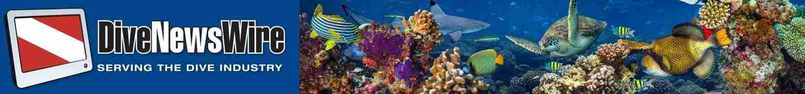 Dive News Wire | Dive Curacao