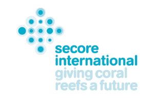 Secore International | Dive Travel Curacao