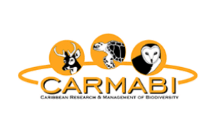 Carmabi | Dive Travel Curaçao