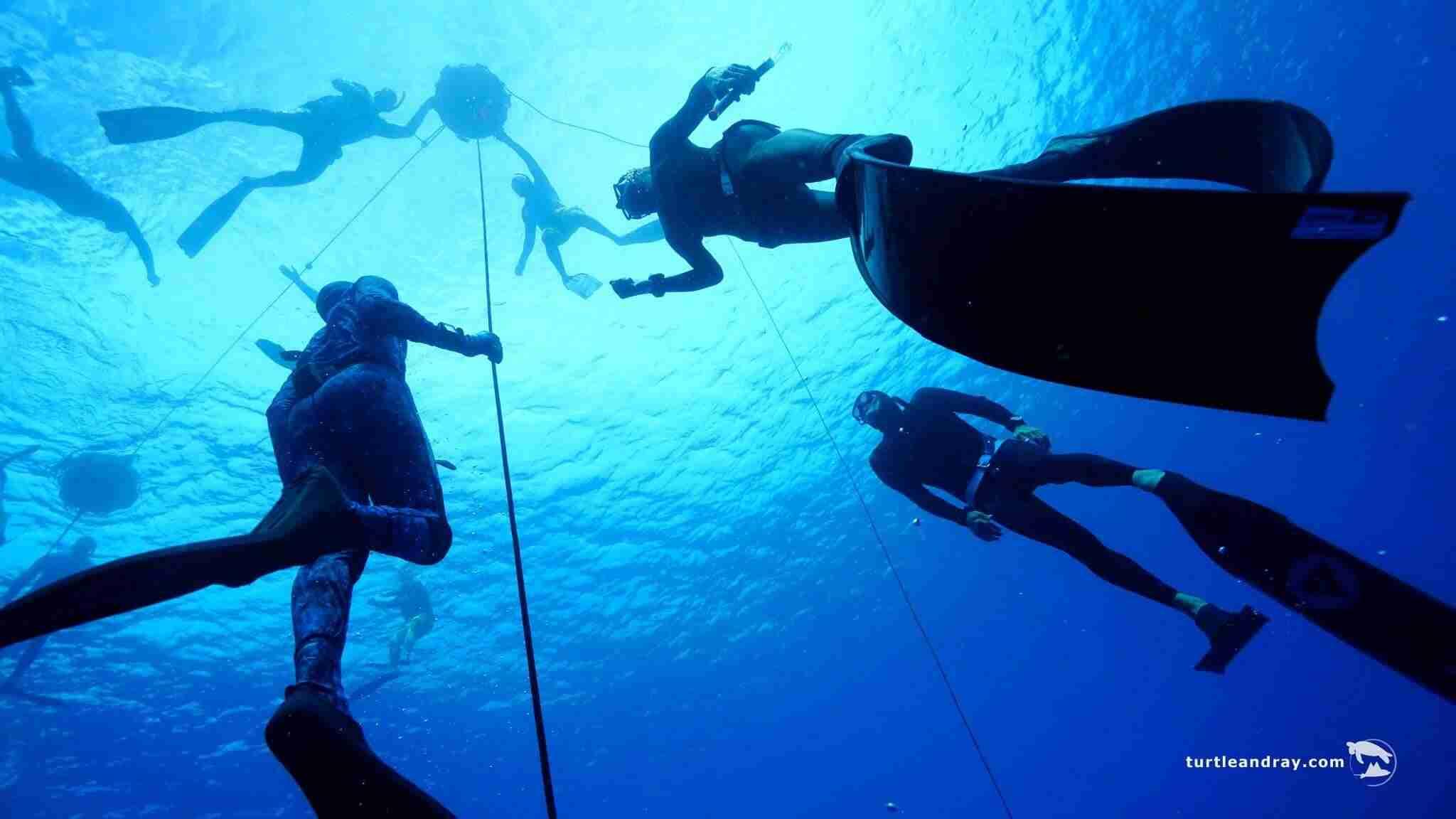 Freedive Center Curacao | Cas Abao Beach | Dive Curacao