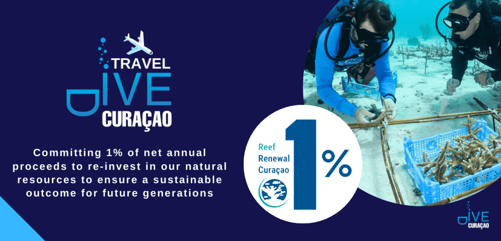Dive Travel Curacao   New Sustainable Tourism Initiative