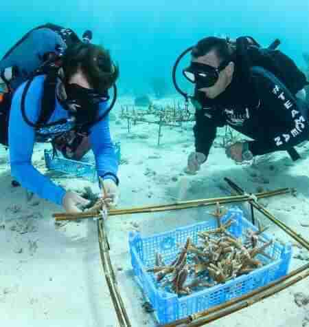 Curacao Dive Travel | Sustainable Tourism Initiative | Dive Travel Curacao