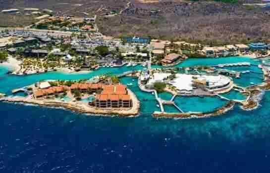 Curacao Sea Aquarium | Episode 14 | Postcards from Curaçao