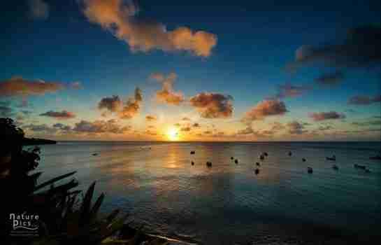 Curacao - Explore the Heart of the Dutch Caribbean   Dive News Curaçao