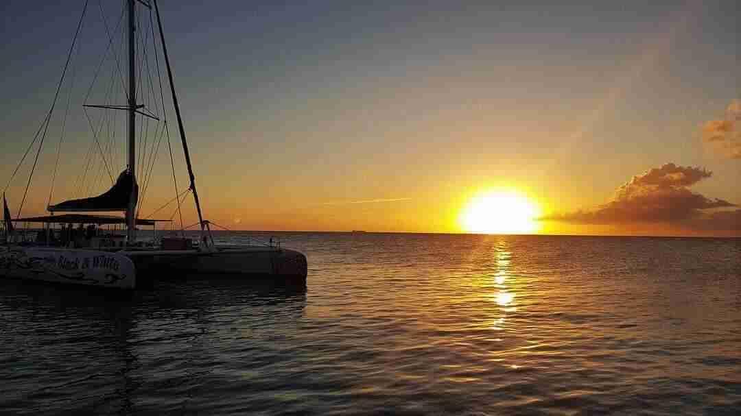 BlueFinn Charters Curaçao | Dive Travel Curacao
