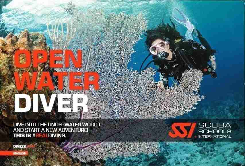 SSI Online Scuba Diving Courses in Curacao