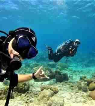 Pierbaai   Curaçao Dive Site Guide   Dive Travel Curacao