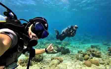 Pierbaai | Curaçao Dive Site Guide | Dive Travel Curacao