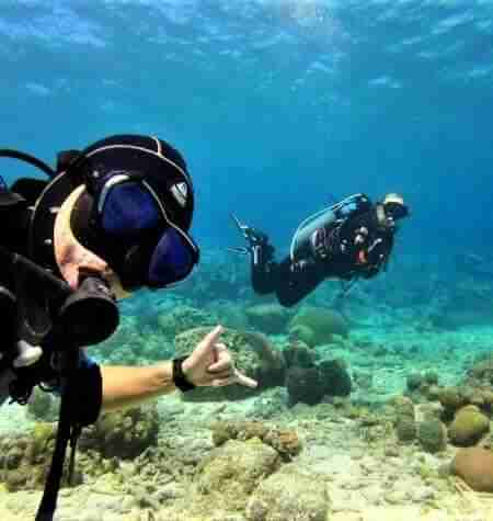 Pierbaai | Curaçao Dive Site Guide | Dive Travel Curacao