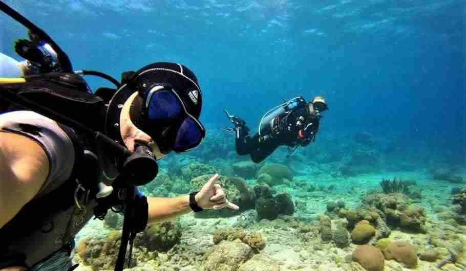 PADI AmbassaDiver Mark Pinnell   Sustainable Tourism   Dive Curacao